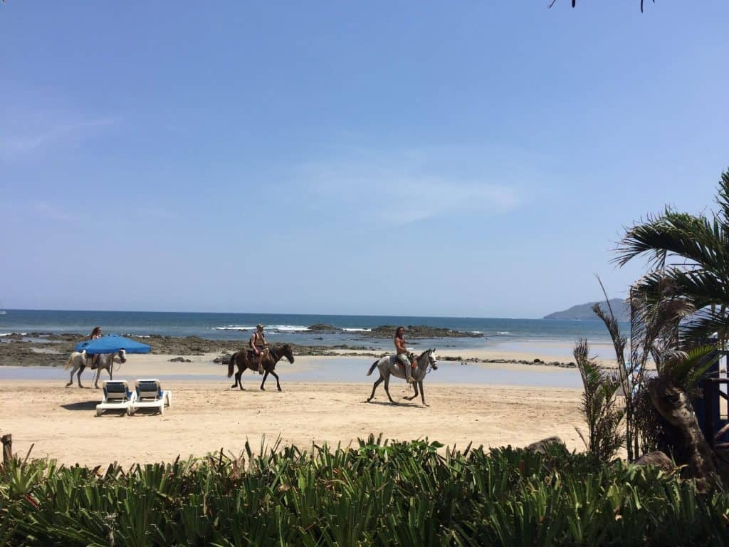 jardin-del-eden-boutique-hotel-review-beach-garden-view-1024x768-7535828